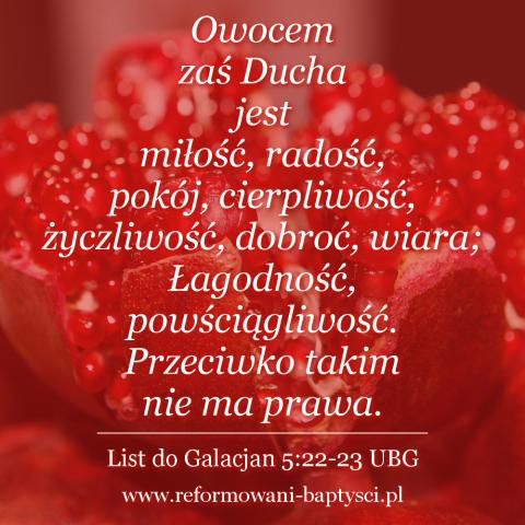 """Reformowani Baptyści Zbór w Zielonej Górze: """"Owocem zaś Ducha jest miłość, radość, pokój, cierpliwość, życzliwość, dobroć, wiara; Łagodność, powściągliwość. Przeciwko takim nie ma prawa"""" (Ga 5:22-23 UBG)."""