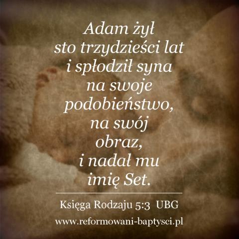 """Reformowani Baptyści Zbór w Zielonej Górze: """"Adam żył sto trzydzieści lat i spłodził syna na swoje podobieństwo, na swój obraz, i nadał mu imię Set"""" (Rdz 5:3 UBG)."""