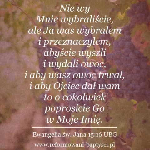 """Reformowani Baptyści Zbór w Zielonej Górze:  PAN Jezus Chrystus powiedział: """"Nie wy Mnie wybraliście, ale Ja was wybrałem i przeznaczyłem, abyście wyszli i wydali owoc, i aby wasz owoc trwał, i aby Ojciec dał wam to, o cokolwiek poprosicie Go w Moje Imię"""" (J 15:16 UBG)."""